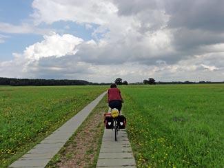 Elbe-Wiese