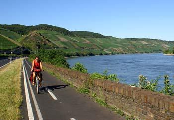 Der Rhein bei Boppard