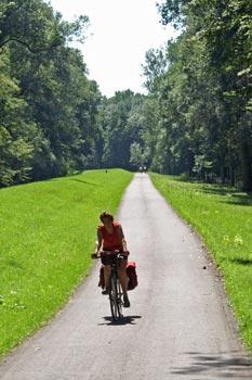 Radweg bei Speyer